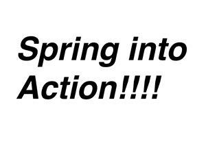 Spring-into-Action2